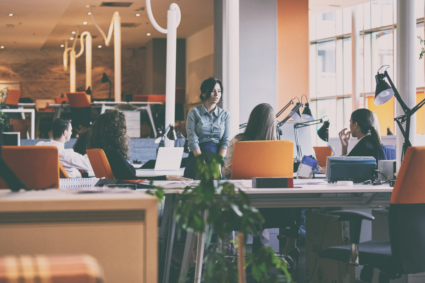 Jak założyć spółkę z ograniczoną odpowiedzialnością? Wszystko co, musisz wiedzieć