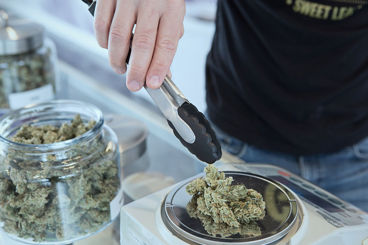 Marihuana. Czy marzenia o wielkim biznesie pójdą z dymem?